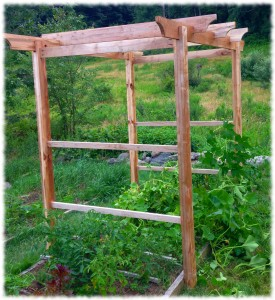 Garden Trellis Completed - just waiting for netting to tie up plants