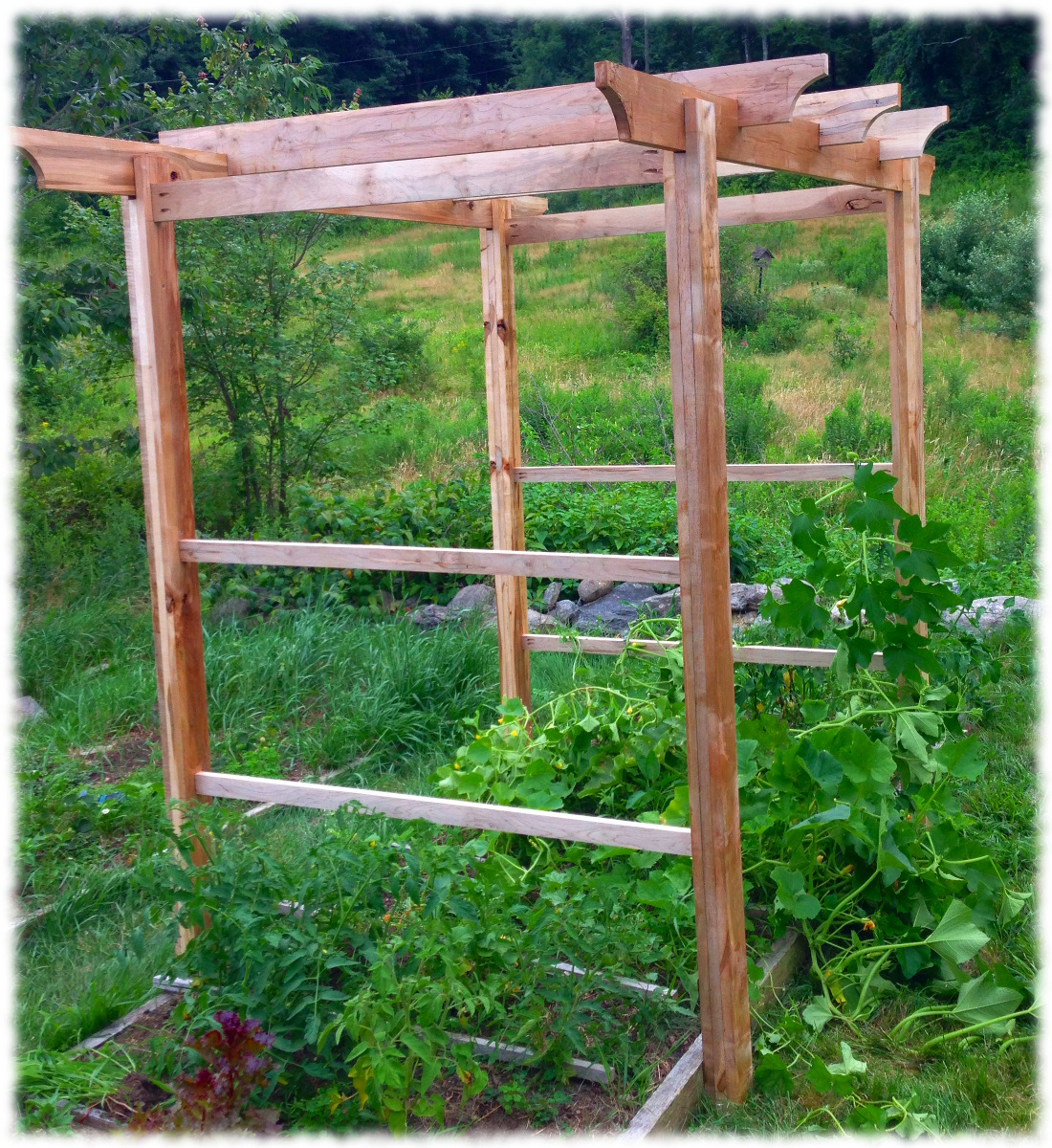 Garden Trellis Completed The Curtis Home Website