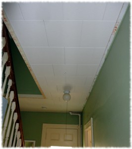 The hall ceiling and light as of Sunday morning.
