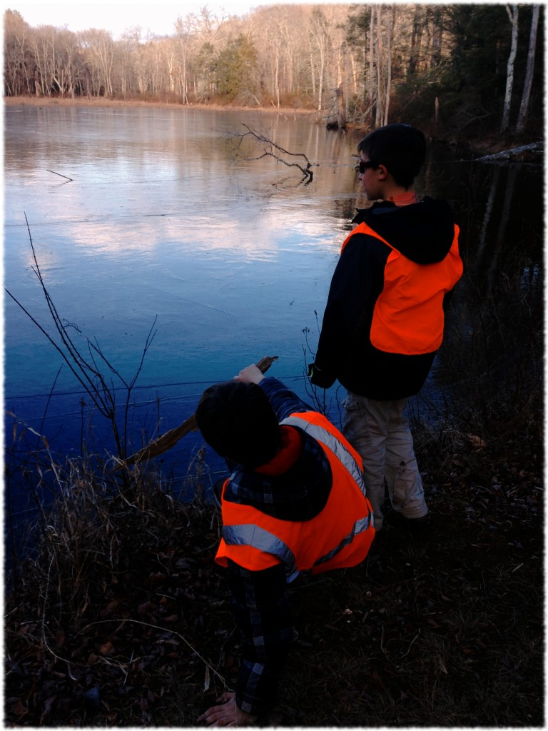 Will and Ben playing by the beaver dam.
