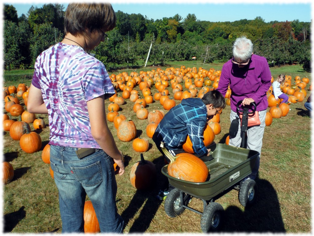 Will, Ben and Grandma Mary selecting the largest pumpkins that the boys can pick up (the rule was that if they couldn't pick them up, we wouldn't get them).