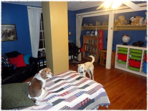 Will's room, refinished, redecorated and reorganized.