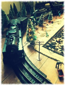 Will's train diorama