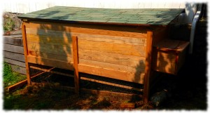 Completed chicken coop made with red oak and maple.
