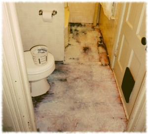 Bathroom floor with old tiles removed and primer/sealer applied