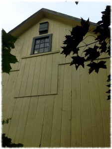 Will's bat house hung on the side of the garage above the loft window.