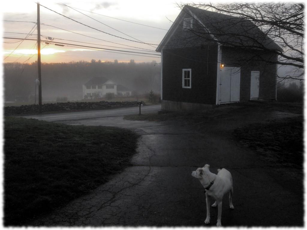 Targa and the sunrise on a foggy and warm Christmas morning.