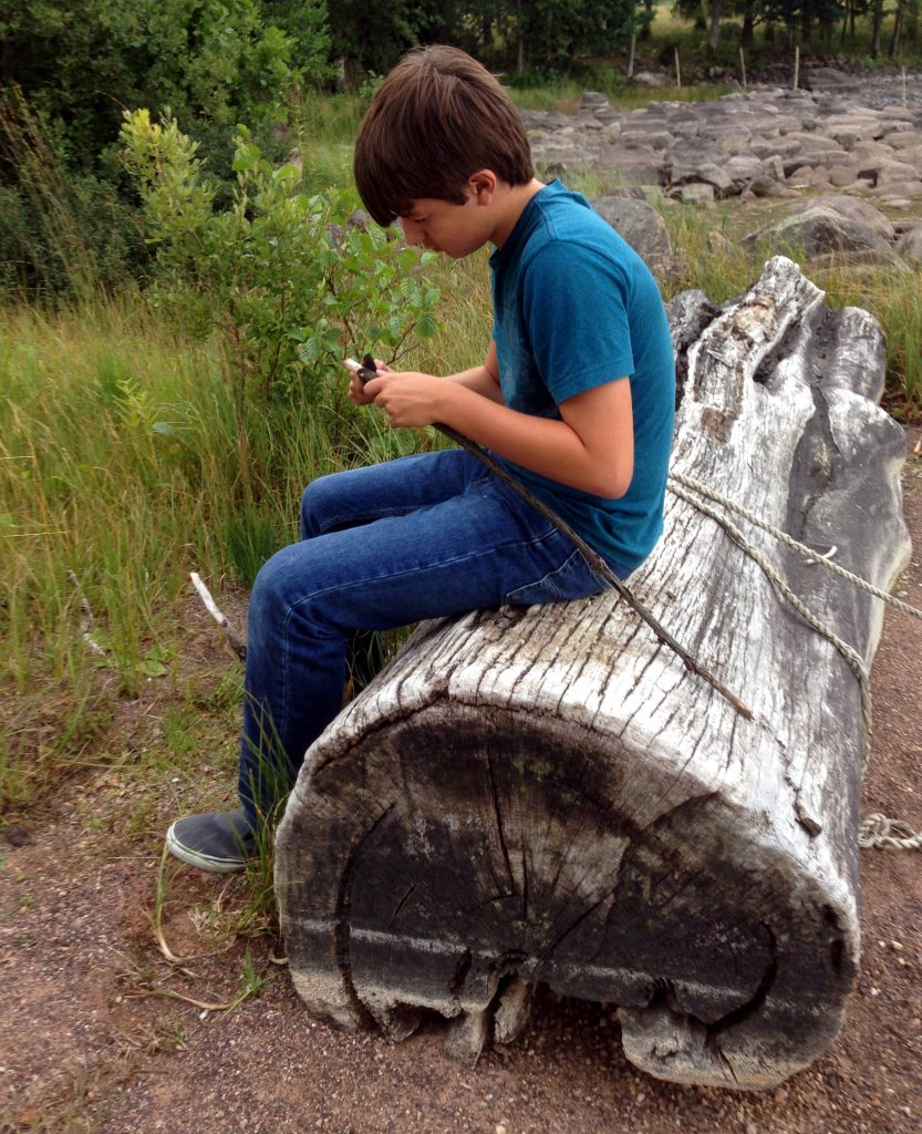 Will taking alone time to carve points on sticks at the cabin on the lake.